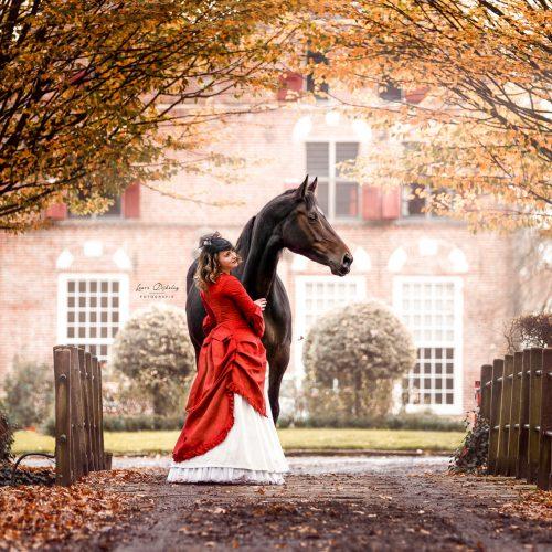 lauradijkslagfotografie paardenfotografie thema