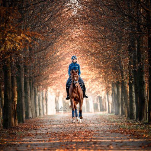 lauradijkslagfotografie paardenfotograaf heerde rijfoto