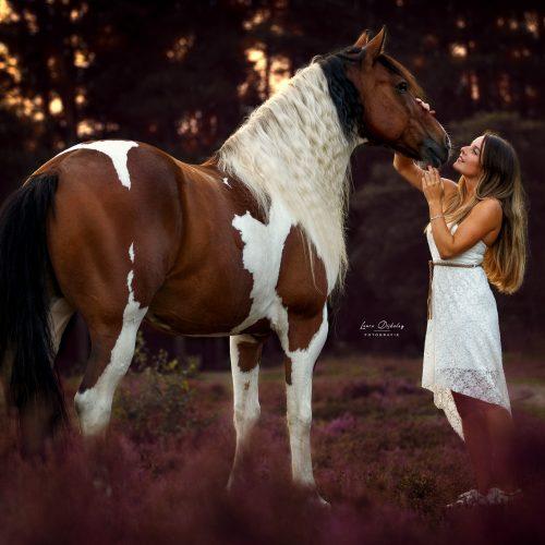 paardenfotografie lauradijkslagfotografie heerde